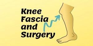 knee fascia